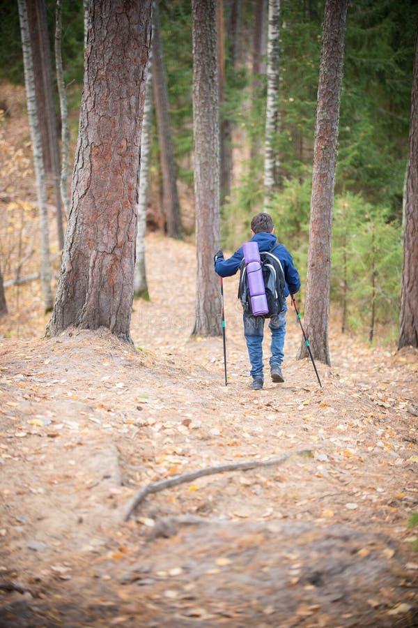 Мальчик с hikers укладывает рюкзак путешествовать в лесе Backview стоковое фото rf