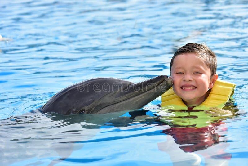 Мальчик целуя дельфина в бассейне стоковые изображения rf