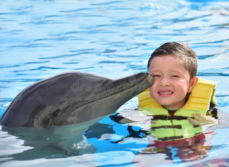 Мальчик целуя дельфина в бассейне стоковая фотография rf