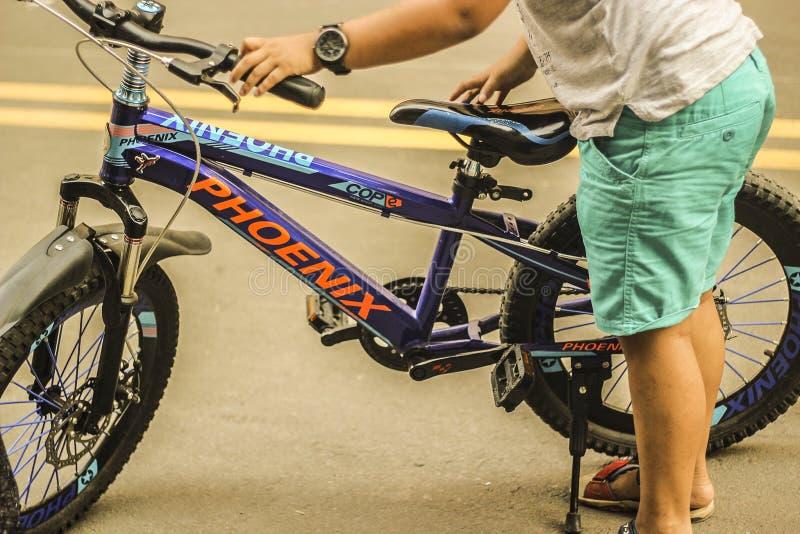 Мальчик цикла в дороге стоковое фото rf