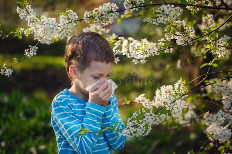 Мальчик чихает из-за аллергии к цветню стоковое фото