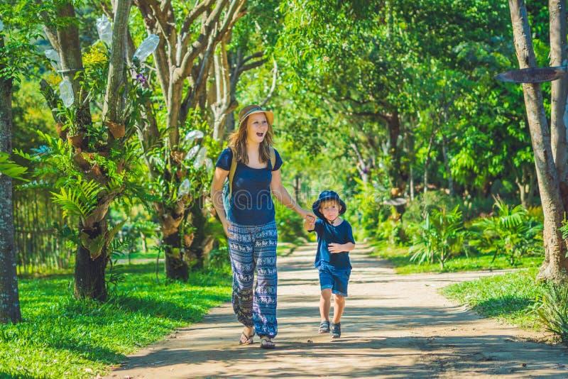 Мама и сын идут в тропический парк стоковые фото