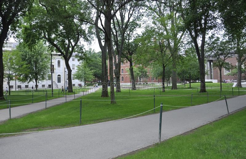 МАМЫ Кембриджа, 30-ое июня: Двор кампуса Гарварда в положении Кембриджа Massachusettes США стоковые изображения rf