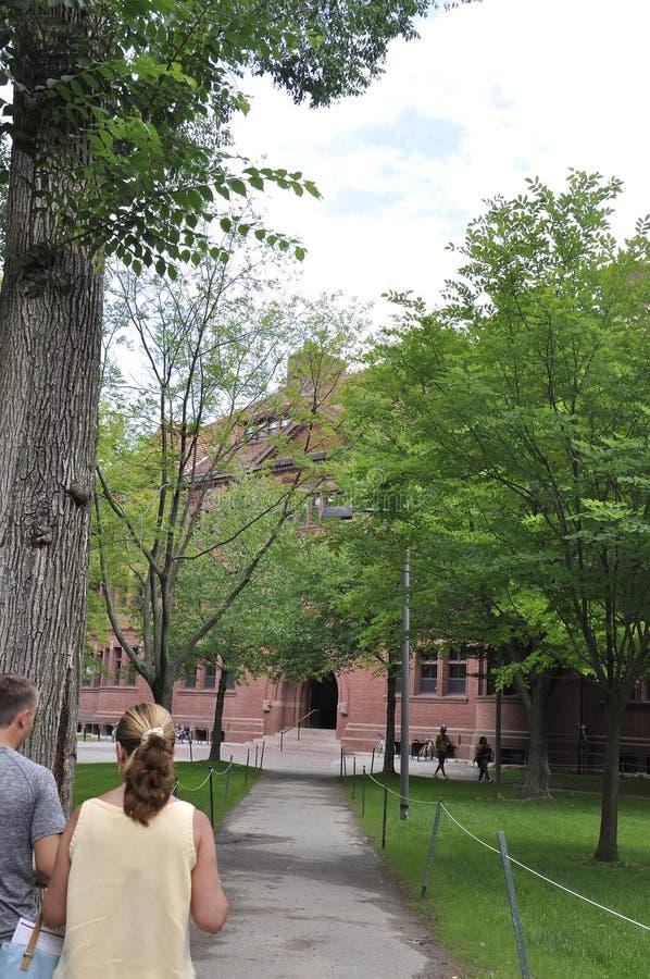 МАМЫ Кембриджа, 30-ое июня: Здание Гарварда Hall от кампуса Гарварда в положении Кембриджа Massachusettes США стоковое изображение