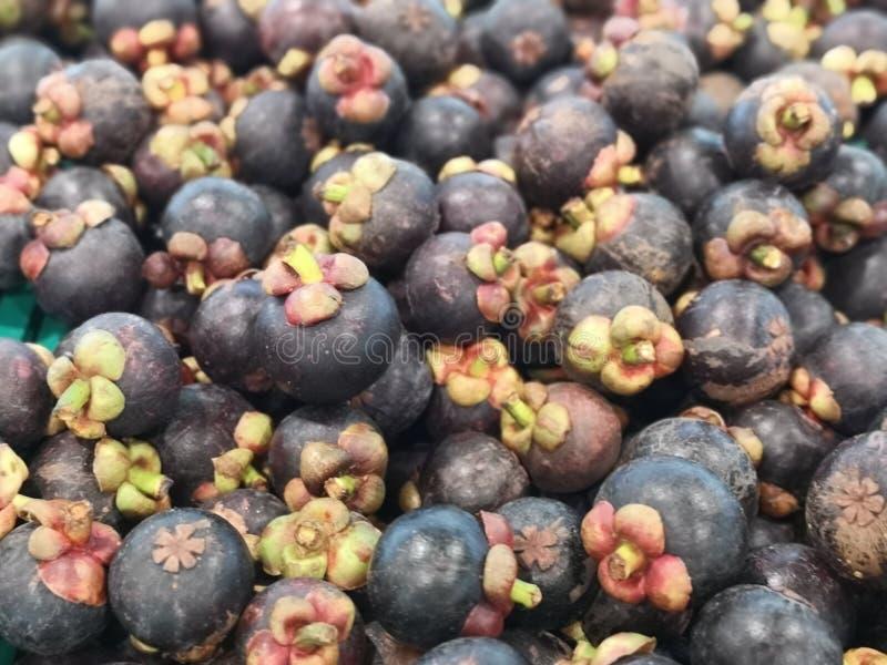 Мангустан имеет пурпурную раковину, белую плоть стоковое изображение