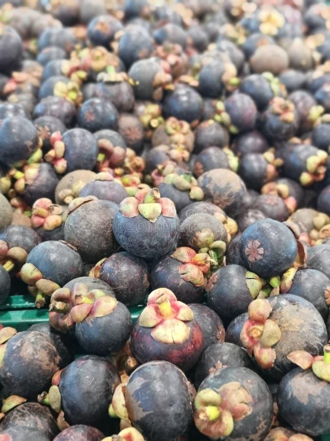 Мангустан имеет пурпурную раковину, белую плоть стоковые фото
