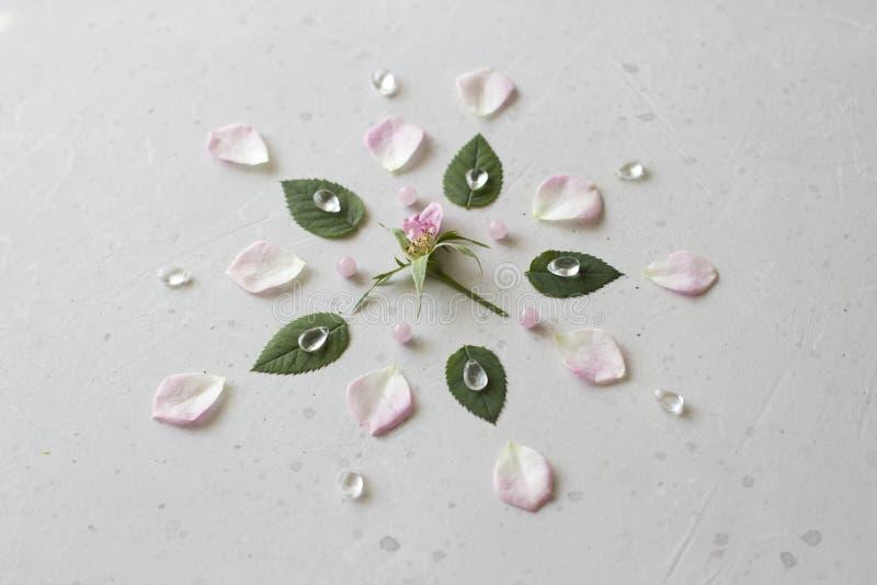 Мандала цветка на серой предпосылке Геометрический флористический состав Роза клало вне на лепестки Камни подняли кварц и утес стоковое изображение rf