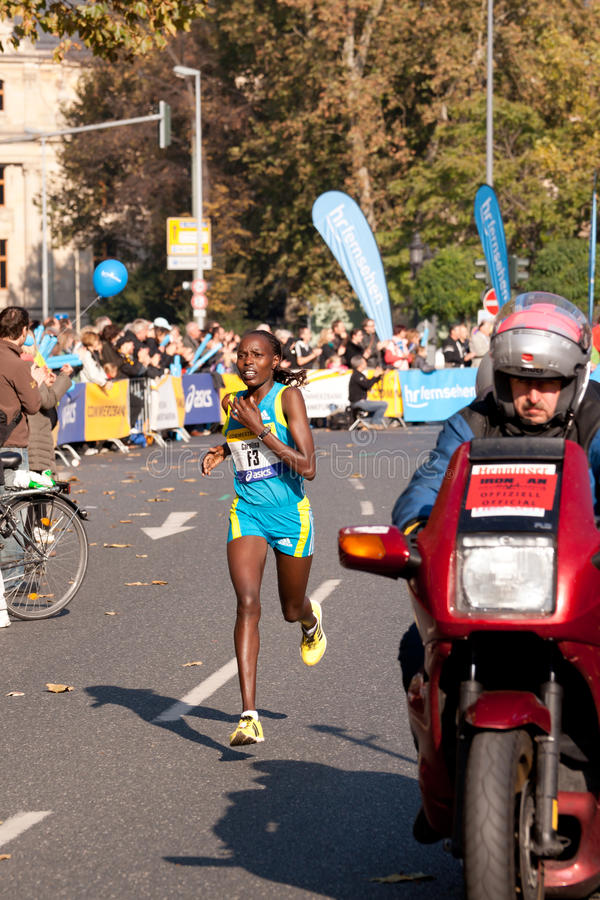 марафон 2010 commerzbank frankfurt стоковое изображение rf