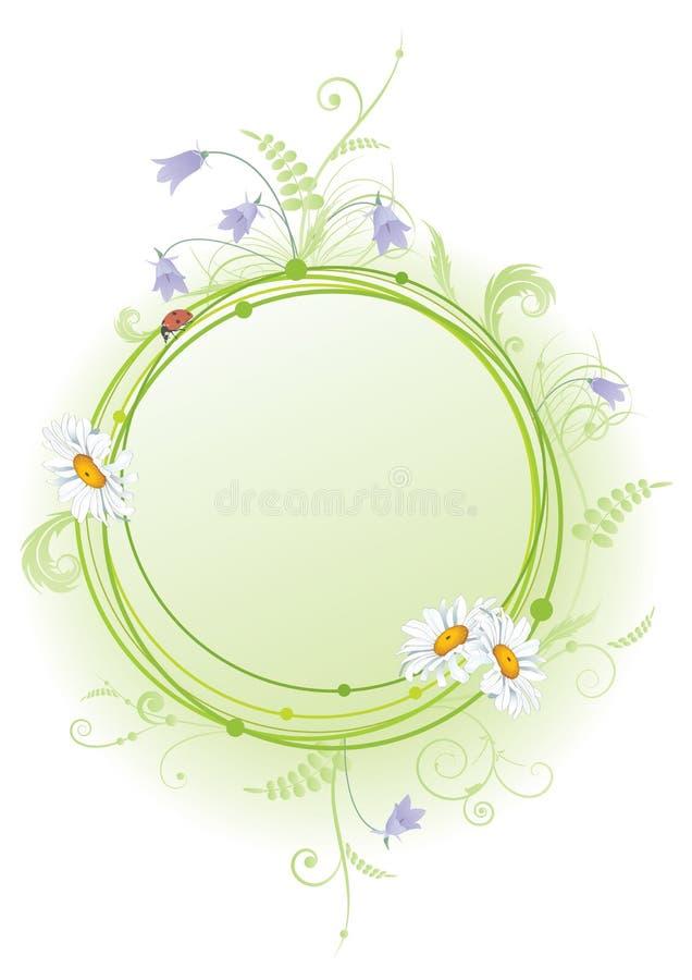 Маргаритка, bluebell и ladybird иллюстрация вектора
