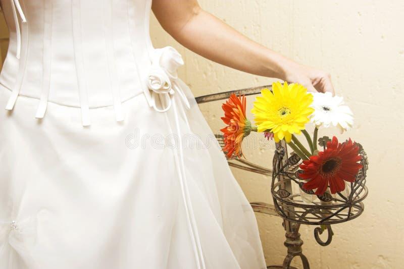 Маргаритки свадьбы стоковое изображение rf