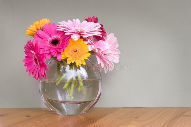 Маргаритки Gerber в вазе стоковая фотография rf