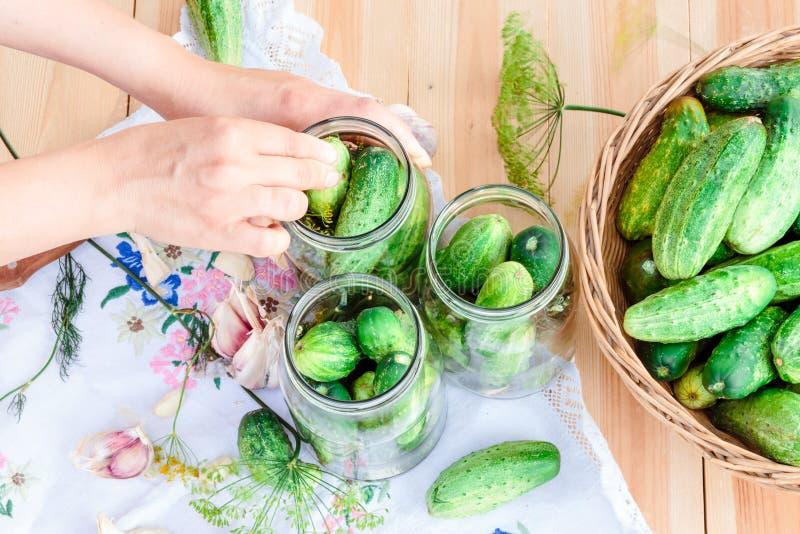Маринуя огурцы с домашними овощами сада стоковая фотография