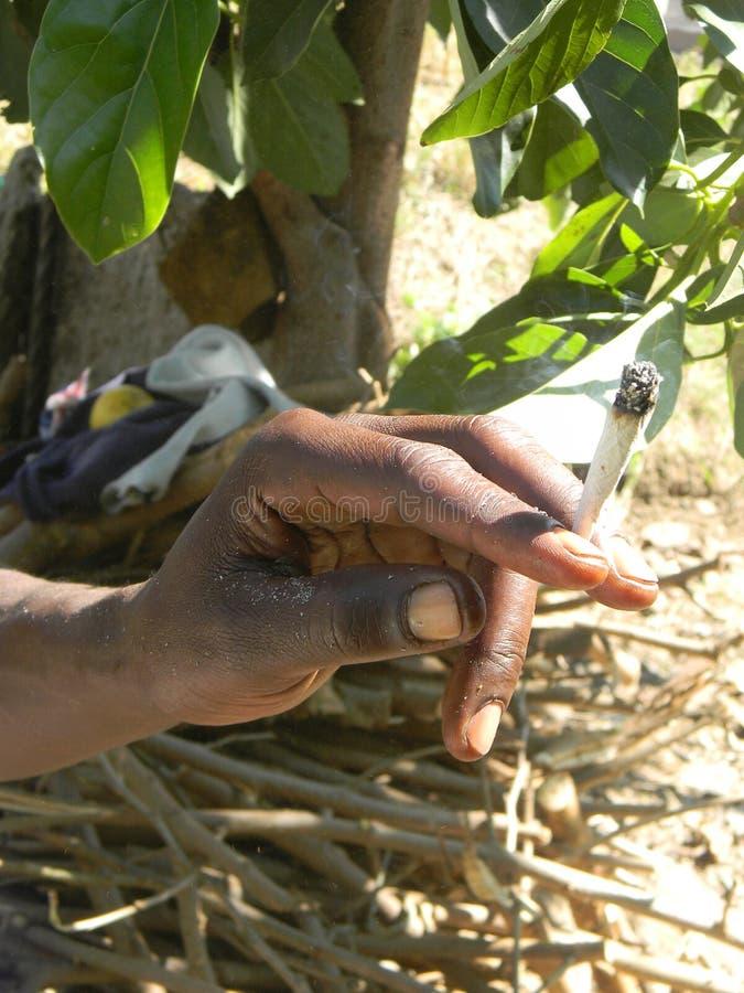 Марихуана руки освещенная удерживанием стоковое фото rf