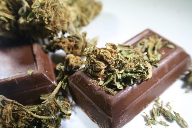 Марихуана Edibles с бутоном на конфетах шоколада стоковая фотография