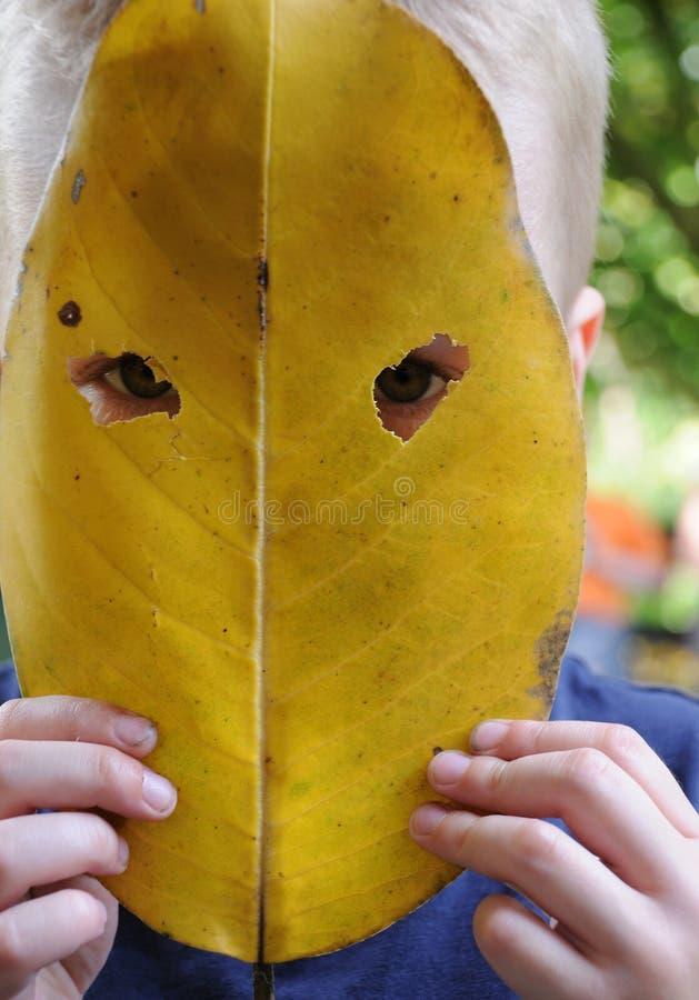 маска листьев стоковые фотографии rf