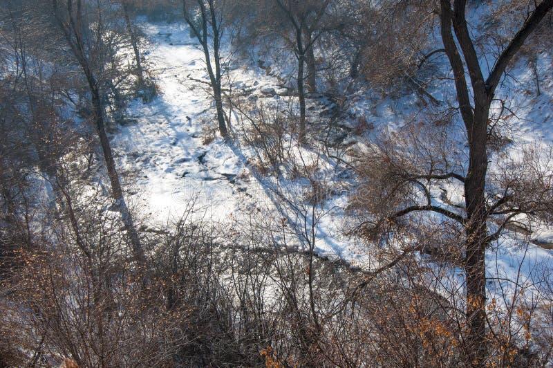 Масло завода, дым на небе, экологичность стоковое фото rf