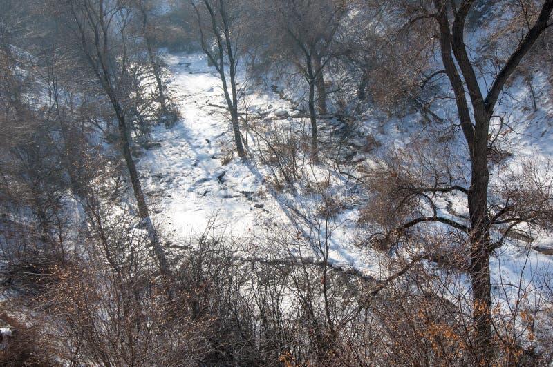 Масло завода, дым на небе, экологичность стоковое изображение rf