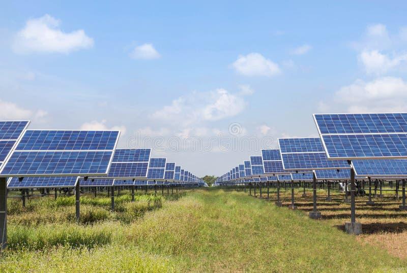 Массив строк поликристаллических фотоэлементов кремния в повороте электрической станции солнечной энергии вверх к небу поглощает  стоковые фото