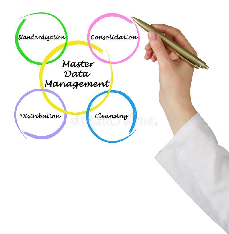 Мастерское управление данными стоковое изображение rf