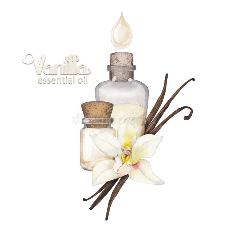 Масло ванили акварели бесплатная иллюстрация