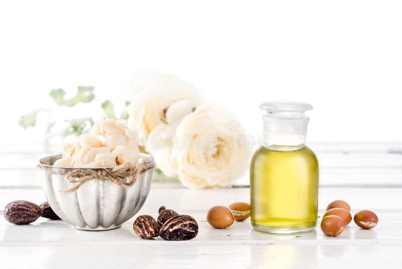 Масло и плодоовощи Argan с маслом и гайками дерева ши стоковая фотография rf
