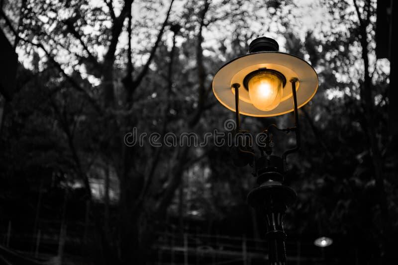 Масляная лампа в Гонконге стоковое фото rf