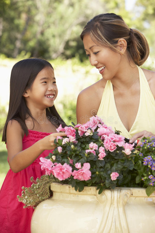 мать дочи садовничая совместно стоковое изображение rf