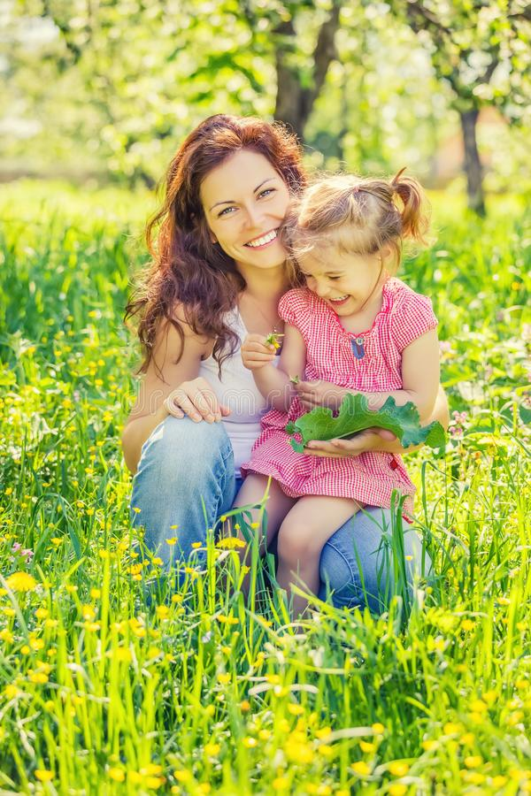 Мать и дочь в солнечном парке стоковые изображения rf