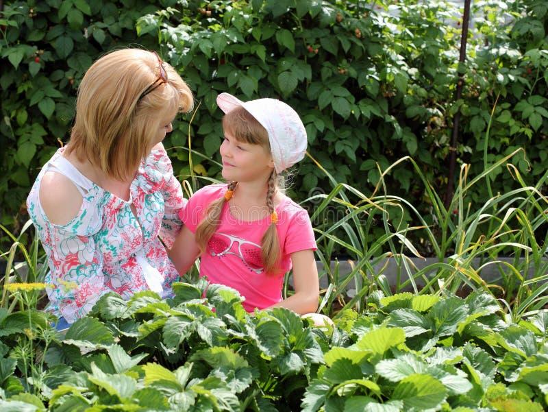 Мать и дочь садовничая совместно стоковое изображение