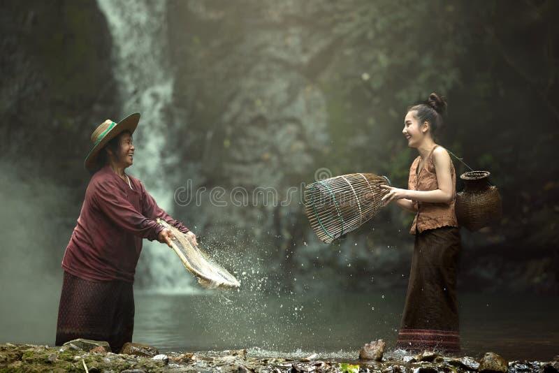 Мать и детеныши стоковое изображение rf