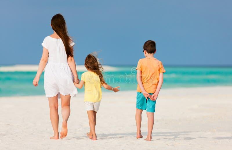 Download Мать и малыши на тропическом пляже Стоковое Фото - изображение насчитывающей океан, подлинный: 40576130