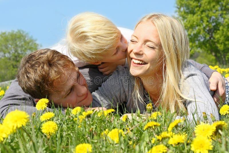Мать, отец и ребенок обнимая и целуя в луге цветка стоковое изображение rf