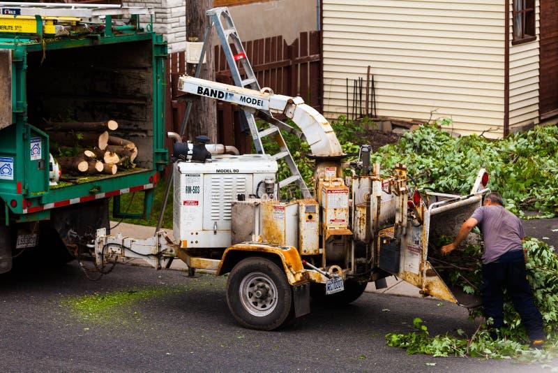 Машина шредера дерева в действии и работники нажимая ветви int стоковая фотография