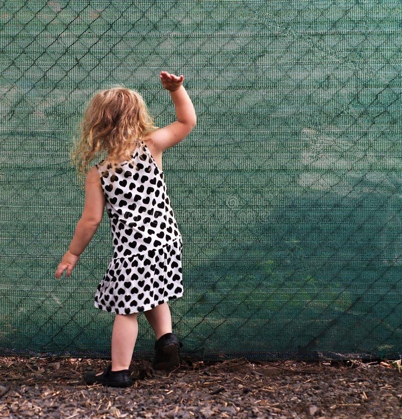 Малая девушка грохая на зеленой загородке стоковые изображения rf