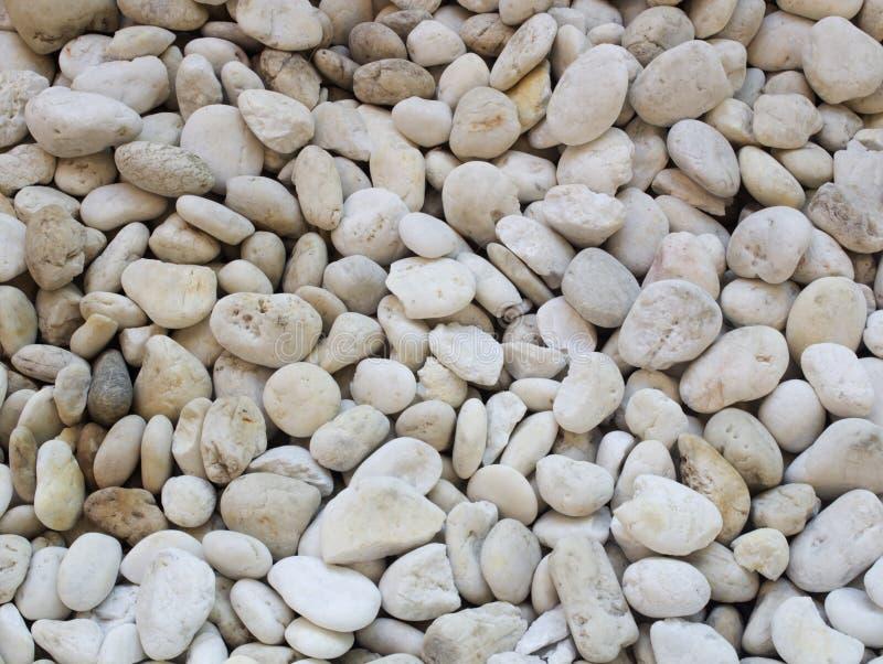 Малая естественно отполированная белая предпосылка камешков утеса стоковое фото rf