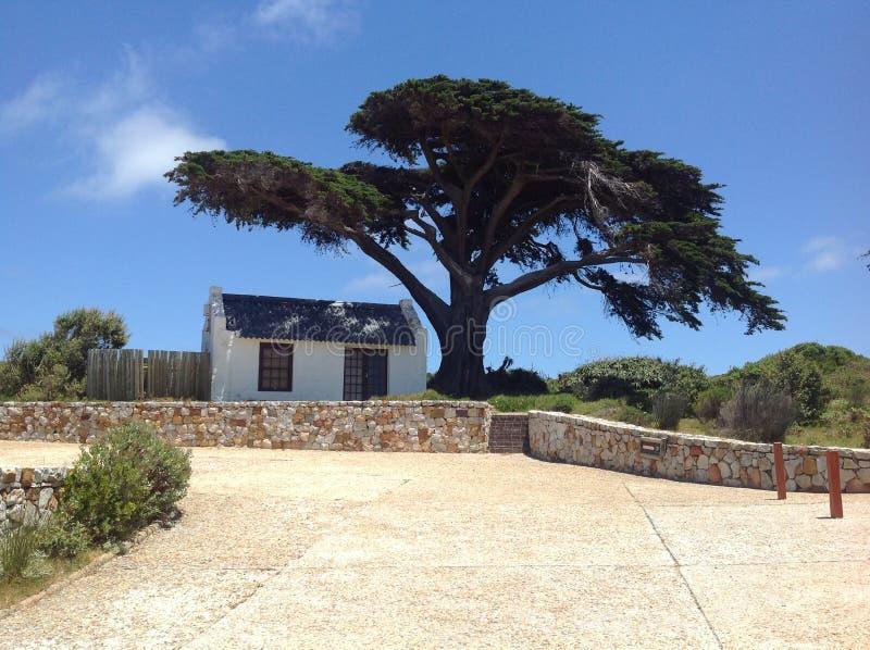 Малая кабина под африканским деревом стоковые изображения rf