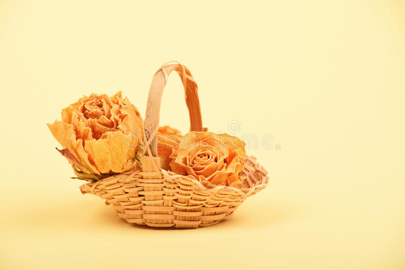 Малая корзина высушенных роз на бежевой бумаге стоковое изображение rf