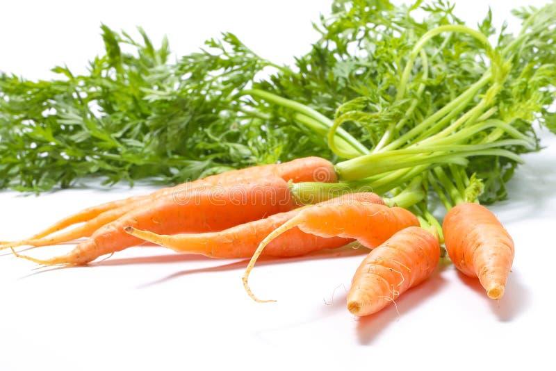 Малая морковь младенца с зелеными листьями стоковые изображения rf