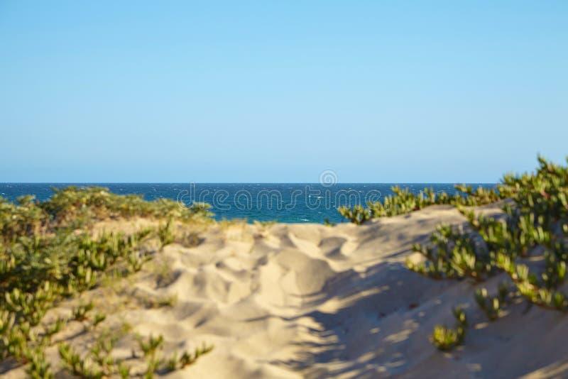 Малая дюна на пляже стоковые фотографии rf