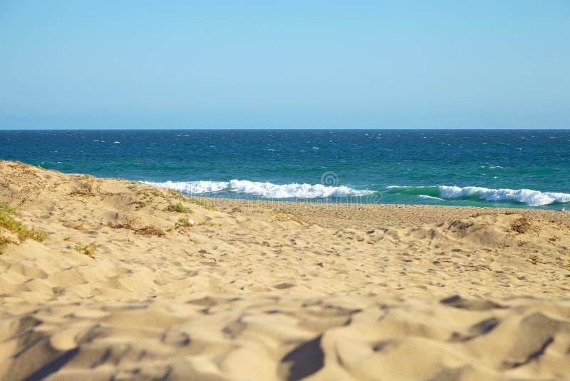 Малая дюна на пляже стоковое фото rf
