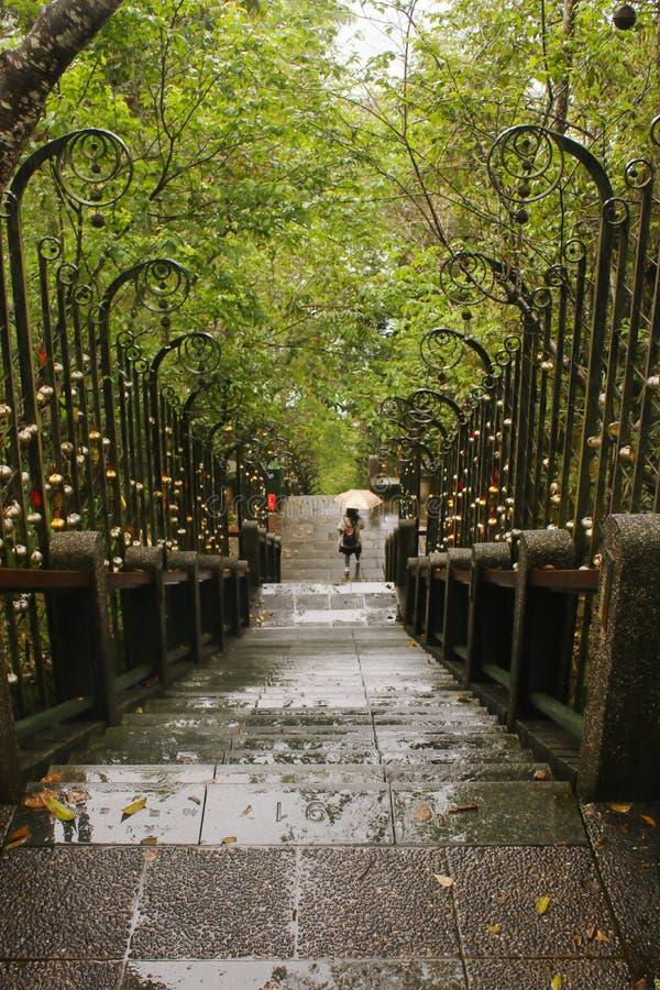 Маленькая девочка в дожде идет ввести малый фонарик золота стоковая фотография rf