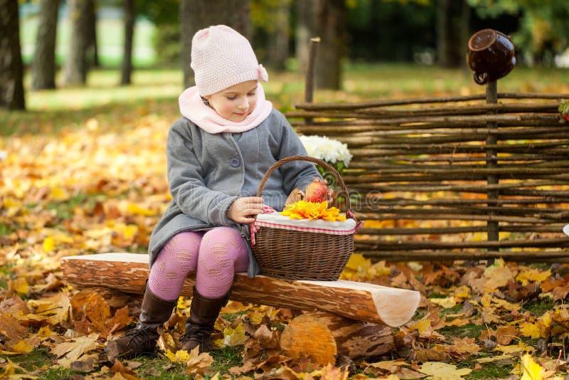 Маленькая девочка в парке осени сидя на деревянной скамье около загородки стоковая фотография