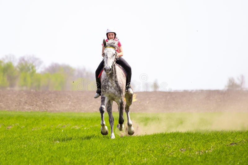 Маленькая девочка в шлеме ехать dapple-серая лошадь на поле травы стоковые изображения rf