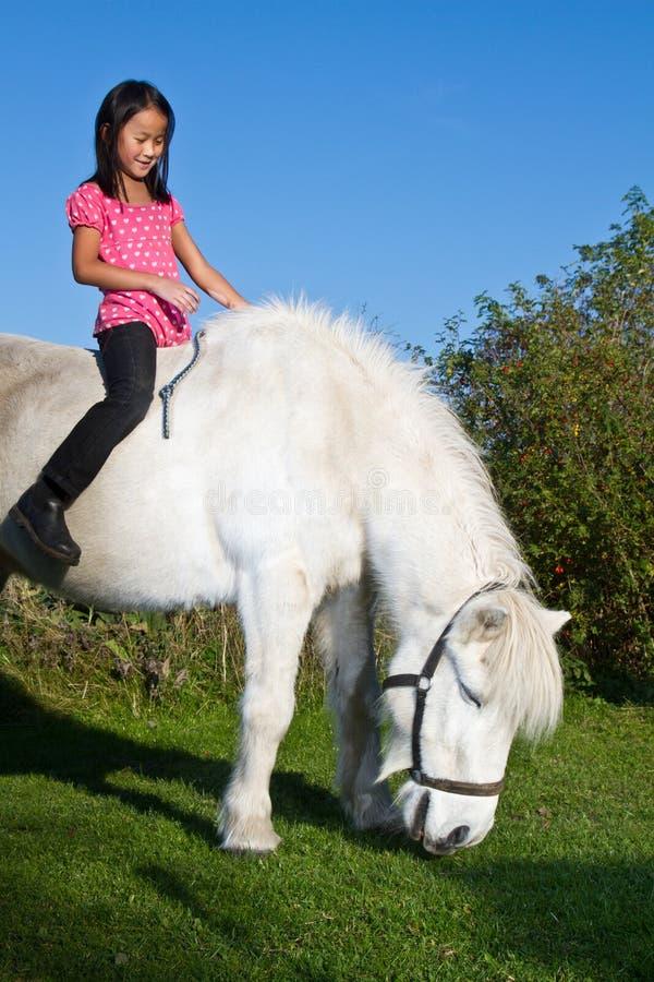 Маленькая девочка ехать белая лошадь стоковые изображения rf