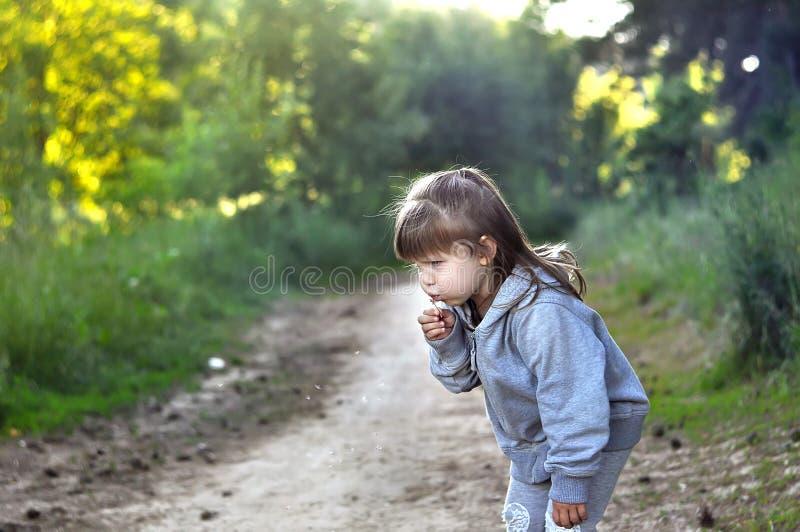 Маленькая девочка играя в солнечной зацветая рудоразборке ребенка малыша леса цветет дуя девушка одуванчика Потеха лета для семьи стоковые изображения