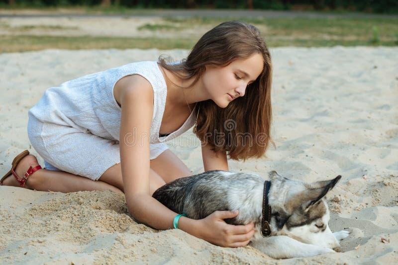 Маленькая девочка и ее собака (осиплые) идя в осень в парке города стоковое изображение rf