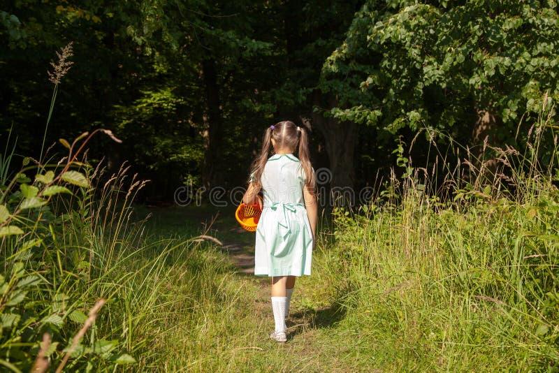 Маленькая девочка идет к лесу стоковые изображения rf