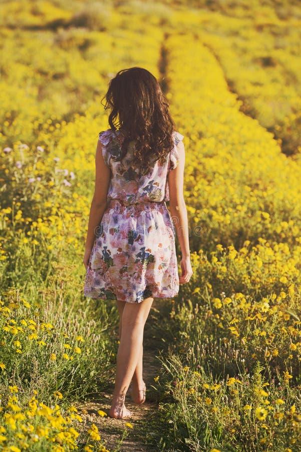 Маленькая девочка идет среди маргариток в поле весны стоковое изображение rf
