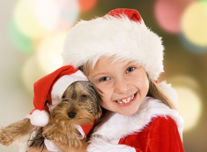 Маленькая девочка и собака на рождестве стоковое изображение rf