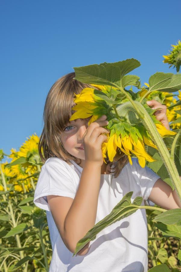 Маленькая девочка и солнцецвет стоковые фотографии rf